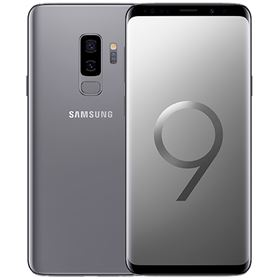 Picture of Samsung Galaxy S9+ Plus 256GB SM-G965F (Titanium Gray)
